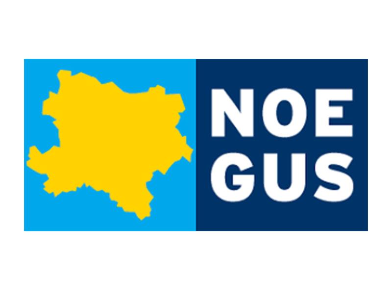 Logo_nögus_800x600